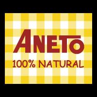 aneto_web